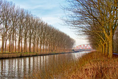 Canal with lines of trees leading to a red arch bridge Royalty Free Stock Photos