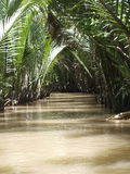 Canal of the Mekong river. In Vietnam Royalty Free Stock Photo