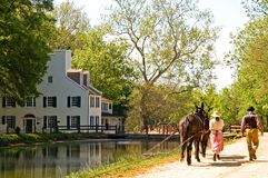 Canal mule team Royalty Free Stock Photo