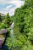 Canal na Holanda Fotografia de Stock Royalty Free