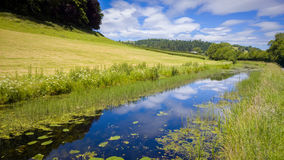 Canal Nature Reserve. Nature reserve on the Shropshire Union Canal. Near Welshpool, Powys, Wales, UK stock image