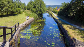 Canal Nature Reserve. Nature Reserve on the Shropshire Union Canal. Near Welshpool, Powys, Wales, UK stock photos