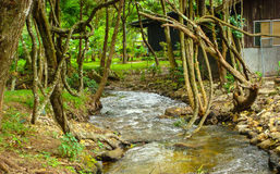 The canal near residence. In thailand Stock Photography