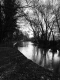 Canal noir et blanc avec la réflexion d'arbre Images stock