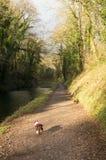 Canal occidental grand Photo libre de droits