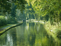 Canal par des arbres Image stock