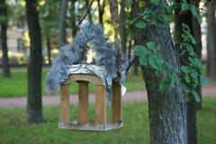 Canal para los pájaros Foto de archivo libre de regalías