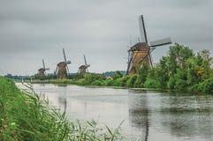 Canal recto con los arbustos y los molinoes de viento florecidos en el banco en un día nublado en Kinderdijk Fotos de archivo
