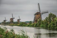 Canal recto con los arbustos y los molinoes de viento florecidos en el banco en un día nublado en Kinderdijk Imagenes de archivo