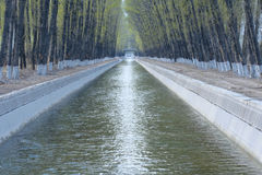 Canal Royalty Free Stock Photo