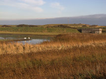 Canal scrape and hide, Spurn Point Royalty Free Stock Photography