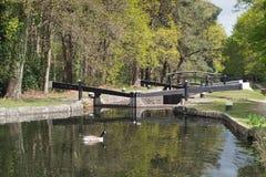 Canal Springtime Stock Photography