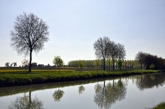 Canal trees Royalty Free Stock Photography