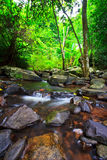 Canal in the tropical forest Royalty Free Stock Photos