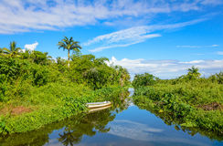 Canal and tropical vegetation near Saint Paul Royalty Free Stock Photo