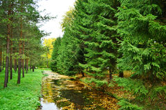 Canal in Tsarskoe Selo Royalty Free Stock Photography