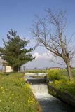 Canal between two trees. Lock of a canal in the middle of rice fields in the Po valley Royalty Free Stock Photography