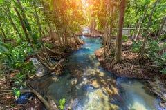 Canal vert clair comme de l'eau de roche étonnant avec la forêt Krabi Thaïlande de palétuvier Photographie stock libre de droits
