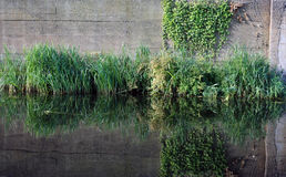 Canal Wall 02 Royalty Free Stock Image