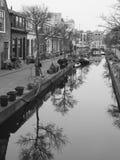 Canale allineato piccolo albero in mezzo di alloggio residenziale Immagine Stock Libera da Diritti
