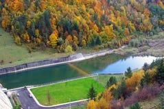 Canale dell'acqua attraverso la foresta fotografia stock