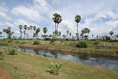 CANALE DELL'ACQUA DI AGRICOLTURA DEL KAMPONG THOM DELLA CAMBOGIA Fotografia Stock