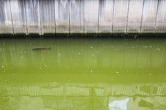 canale di Chiba fotografia stock libera da diritti
