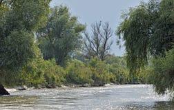 Canale di delta del Danubio immagine stock