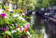 Canale di fiume di foto dell'Olanda Fotografia Stock