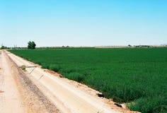 Canale di irrigazione Immagine Stock Libera da Diritti