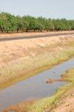 Canale di irrigazione davanti al frutteto Fotografia Stock