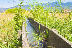 Canale di irrigazione dell'Italia con i vecchi elementi del calcestruzzo prefabbricato Fotografia Stock Libera da Diritti