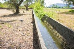 Canale di irrigazione dell'Italia con i vecchi elementi del calcestruzzo prefabbricato Immagini Stock Libere da Diritti