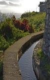 Canale di irrigazione di Levada sul Madera, Portogallo Fotografia Stock Libera da Diritti