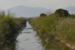 Canale di irrigazione nel Nord della Grecia Immagini Stock