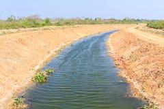Canale di irrigazione per agricoltura di estate Fotografia Stock