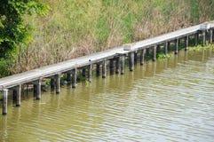 Canale di Khlong Preng in paese Chachoengsao Tailandia fotografia stock libera da diritti