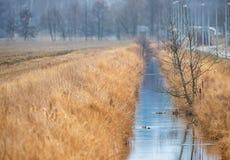 Canale idrico di irrigazione in un paesaggio rurale Fotografia Stock