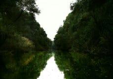 Canale idrico nel delta di Danubio Fotografia Stock Libera da Diritti