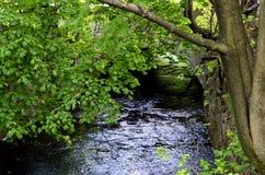 Canale navigabile alle acque verde smeraldo Fotografia Stock