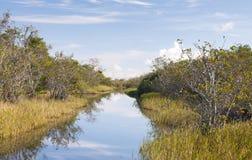 Canale navigabile dei terreni paludosi Immagini Stock Libere da Diritti