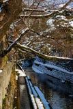 Canale nella vecchia città di Takayama Immagini Stock Libere da Diritti