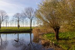 Canales de Amstelveen, tiempo del otoño Fotos de archivo libres de regalías