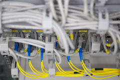 Canaleta da fibra ao conversor do Ethernet Foto de Stock