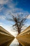 A canaleta de irrigação. Foto de Stock Royalty Free