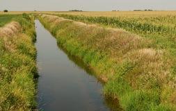 Canaleta de irrigação da exploração agrícola Fotos de Stock Royalty Free