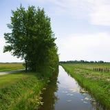 Canaleta e árvores imagens de stock