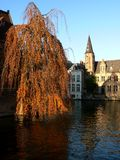 Canals of Bruges. A view on one of the canals of Bruges Royalty Free Stock Image