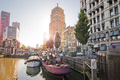 The canals of Rotterdam. City channels. Street along the canal. Trees and cars along the canal in sunny weather Royalty Free Stock Image