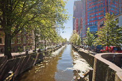 The canals of Rotterdam. City channels. Street along the canal. Trees and cars along the canal in sunny weather Royalty Free Stock Photography